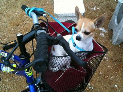 Ben_bikeride2