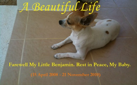 Benjamin - A Beautiful Life RIP
